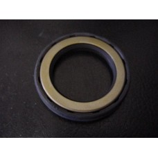 Input Oil Seal - EVO